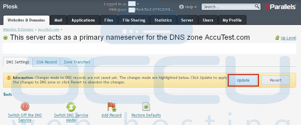 Select Update Option to Save DNS Record Changes