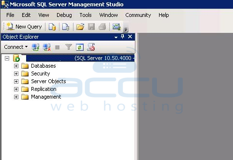 Successful Connection to MSSQL Server 2008