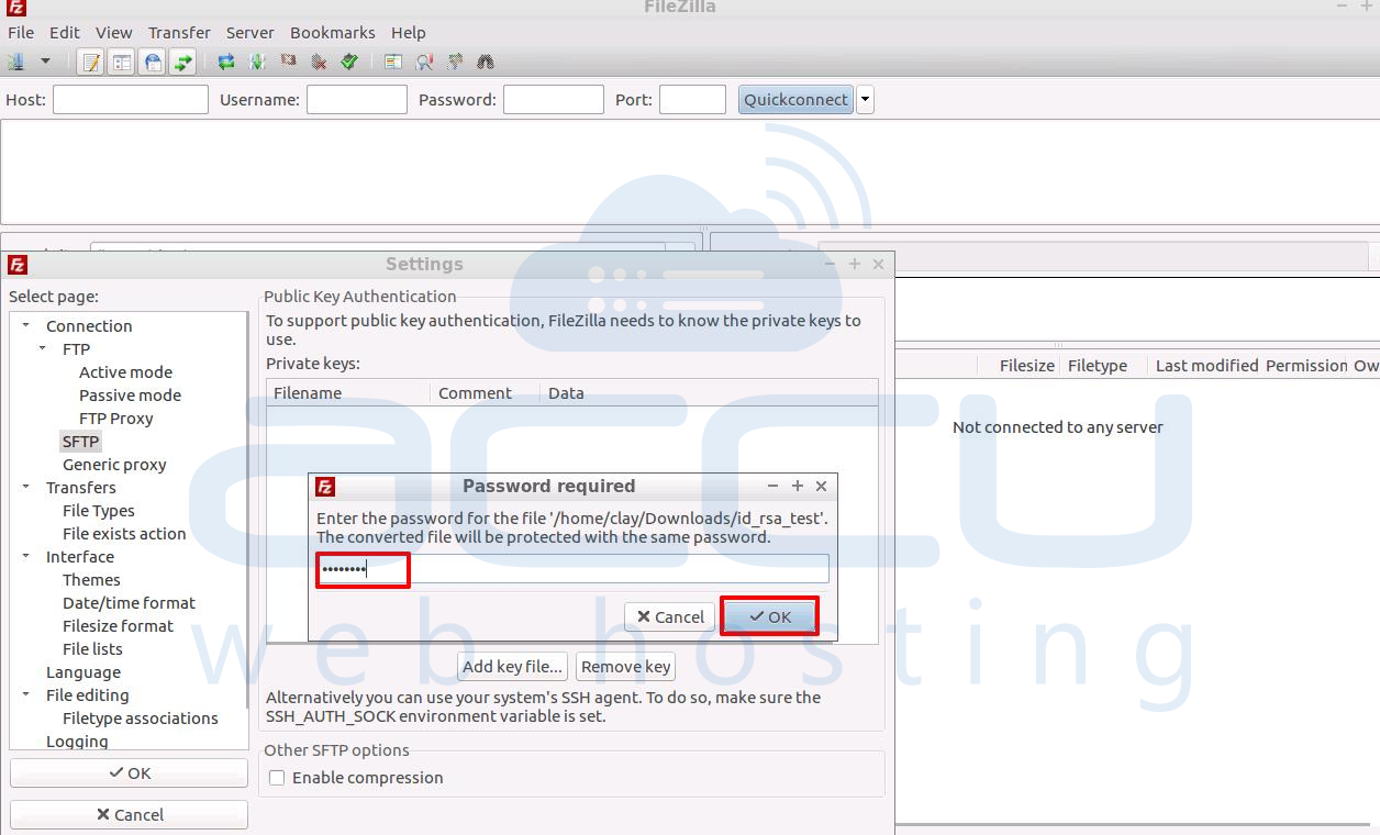 Provide SFTP Key Password