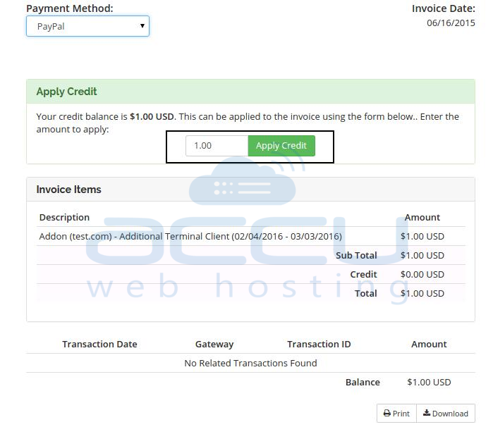 Pay Invoice using Available Credit Balance