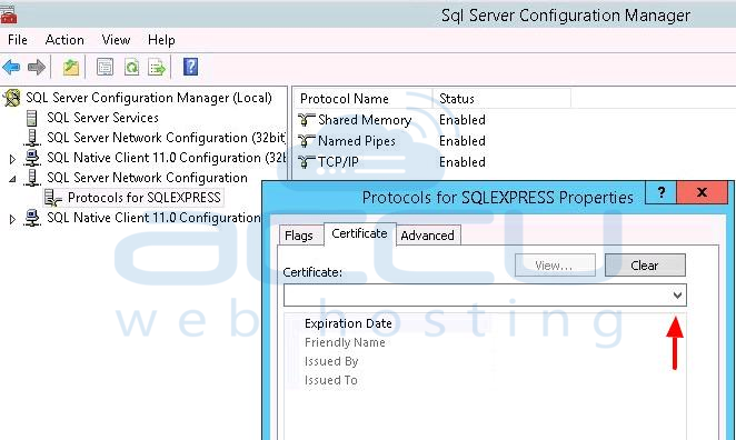 Ssl Certificate at Sqlmanager