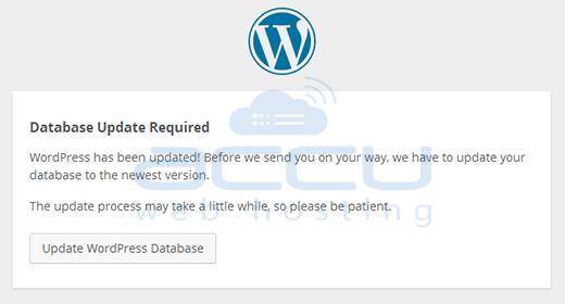 Database Update Wordpress