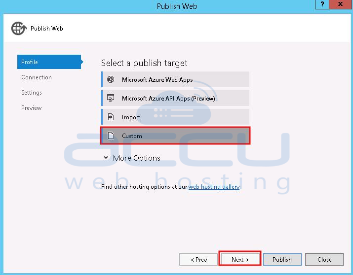 Select Publish Target as Custom